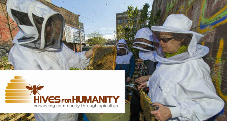 Hives-for-Humanity-750x402