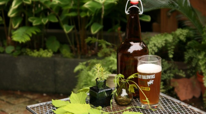 The Botany of Beer